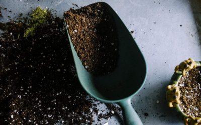 We Use Enhanced Earth Friendly Soils!